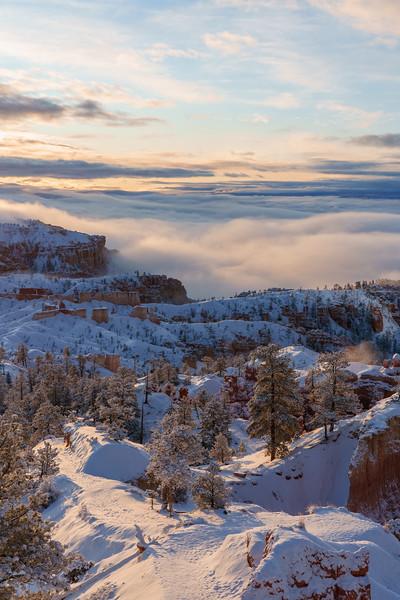 200319 - Bryce Canyon - 09903-HDR.jpg