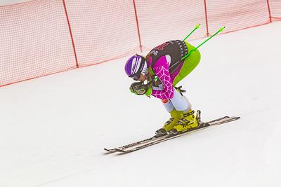 2018 Willis Ski Shop SL U8-U14