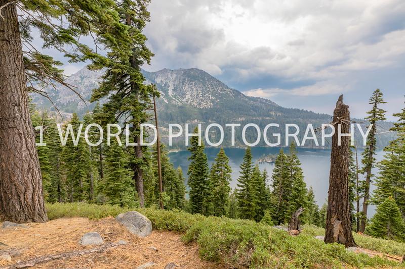 San Fran_Lake Tahoe Trip 2017-222-25.jpg