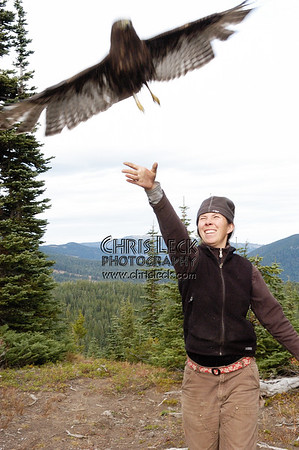 Bonney Butte Raptor Migration Project, Oct. 12, 2005