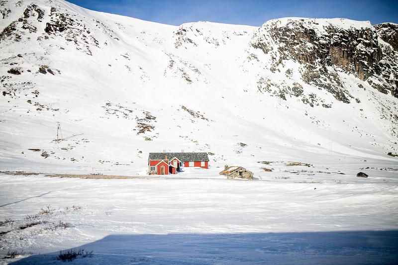 Norway_Odyssey_429.jpg