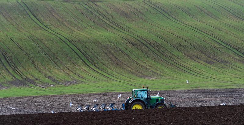 Ploughing at North Binns.  10/03/15