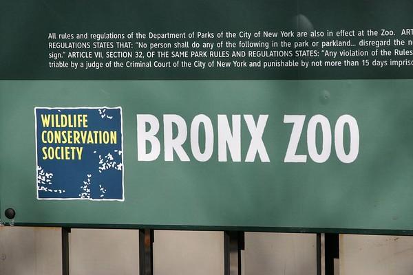 January  - February 18 - The Bronx Zoo Trip & More...