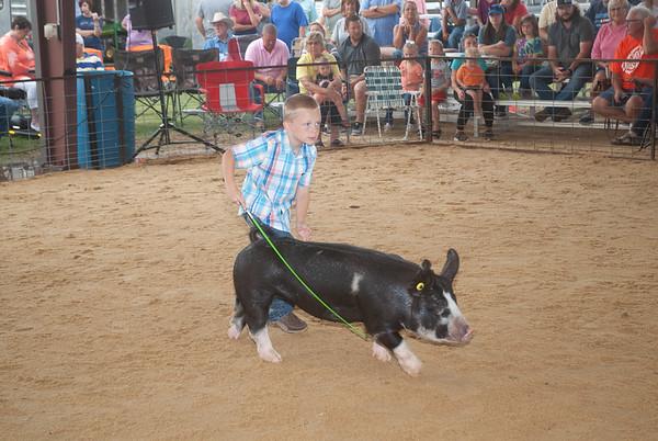 Weatherford Rt Classic Swine