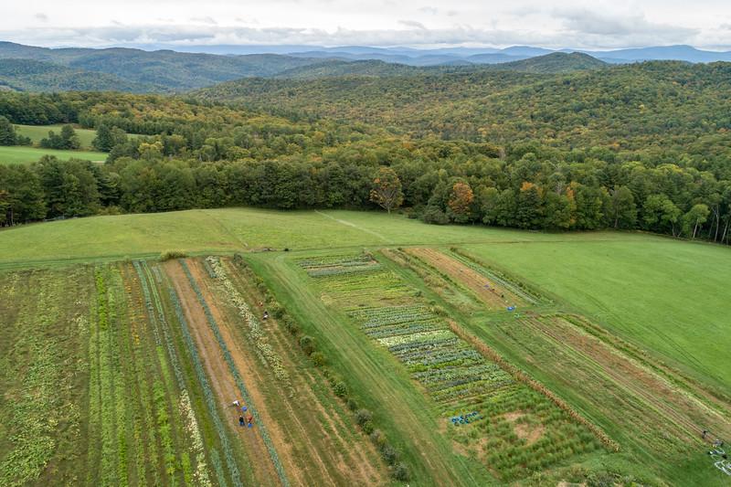 farm day fall 2018-159.jpg