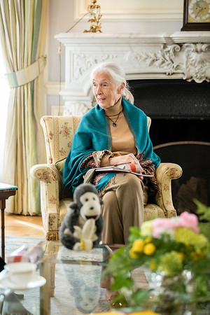 Jane Goodall and Julius Meinl at the British Embassy