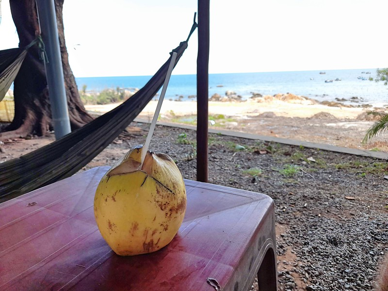 20200912_133458-coconut-view.jpg