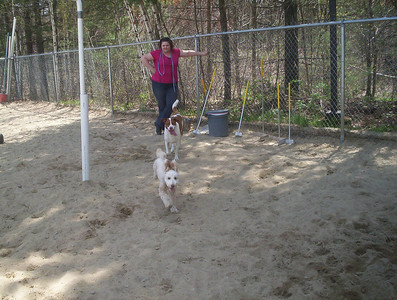 All Dogs Gym 5-2-2011