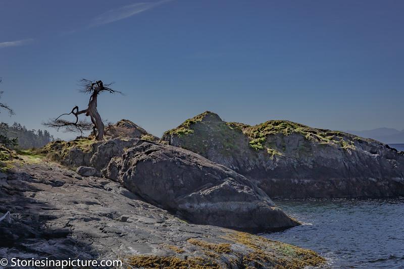 Buccaneer Bay-4350.jpg