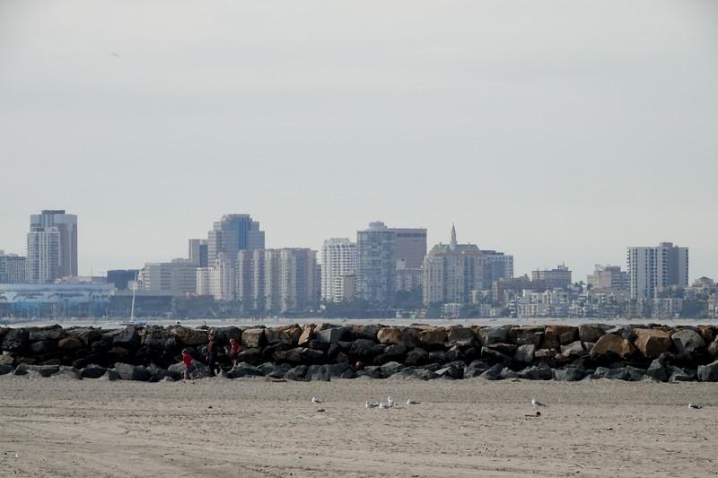 seal beach-089.jpg