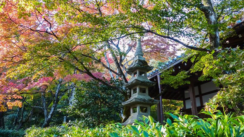Kyoto / Arashiyama