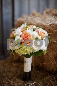 2011-Wedding-Portfolio