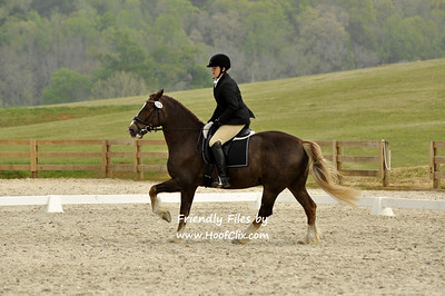 Amy	Walters	riding	Solstice Regal Rum	#	109	!