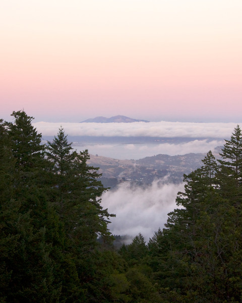 Mt. Tamalpais ref: c9c0158d-4912-4ebb-a5d6-a2482447987c