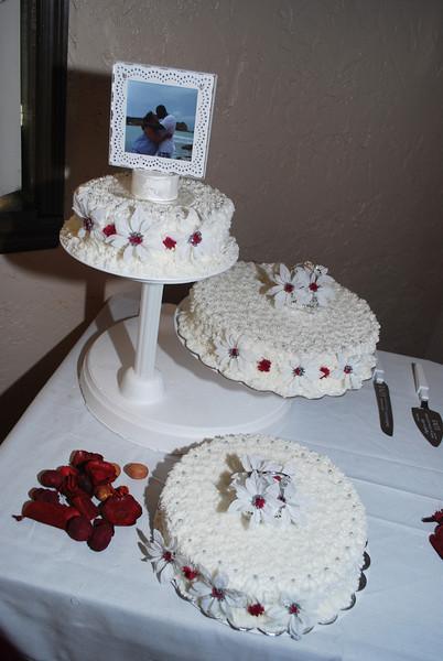 Wedding 10-24-09_0443.JPG