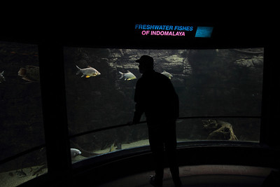 Toronto Zoo - Nov 2012