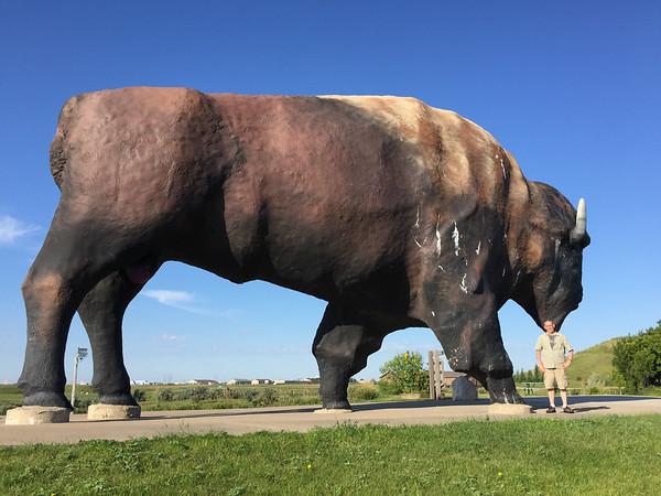 2016 Roosevelt National Park