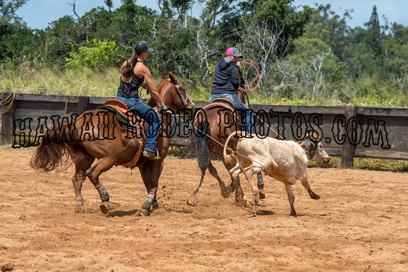 MAUKELE ROPING MARCH 19,  2016