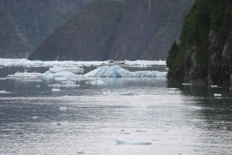 small boat dodging ice in Tracy Arm