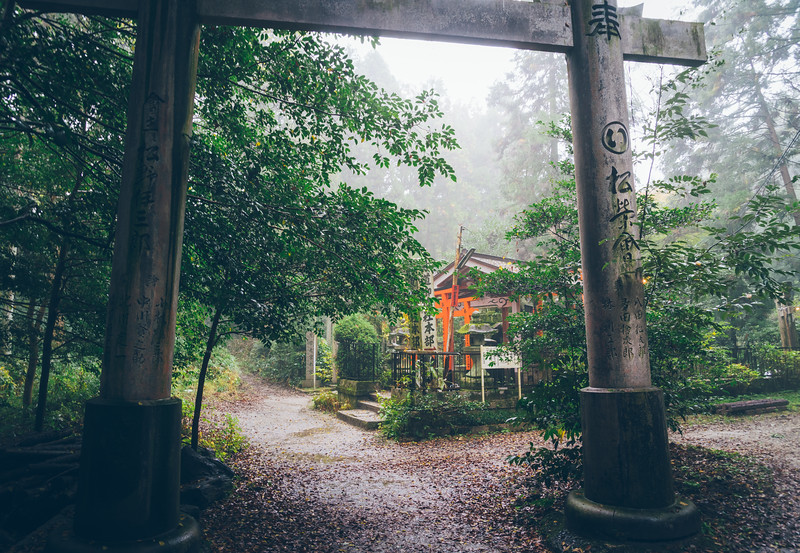 misty and mysterious scene at the Fushimi Inari Shrine Japan.jpg