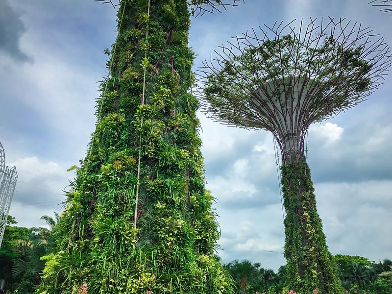 Singapore-213.jpg