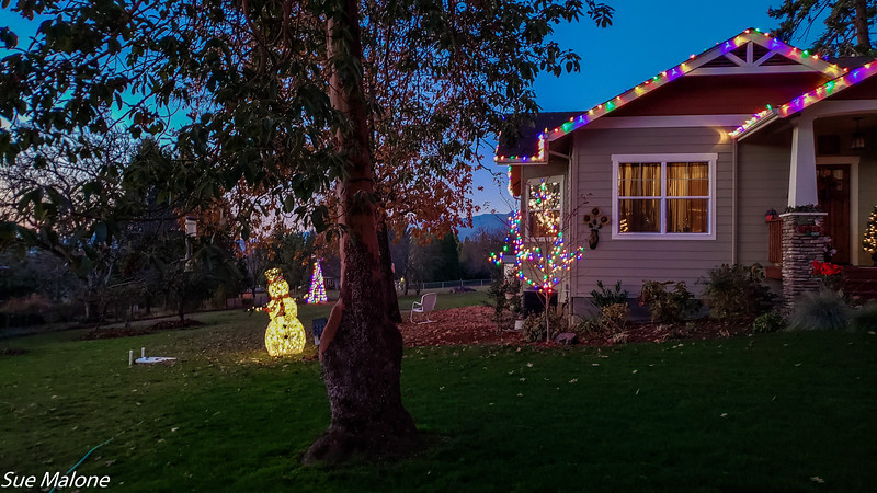 12-01-2020 Christmas Lights Up-12.jpg