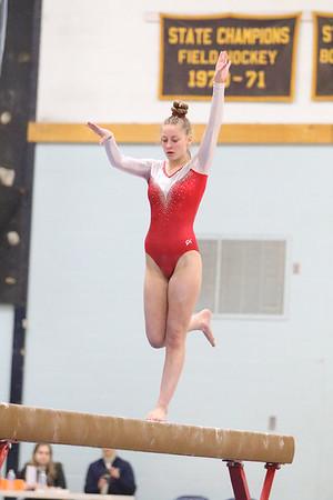 2020 Gymnastics State Championships 2/15/20