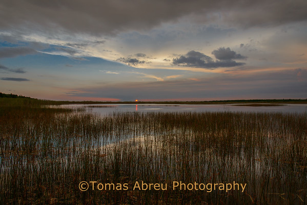 Everglades National Park - August 1st, 2012