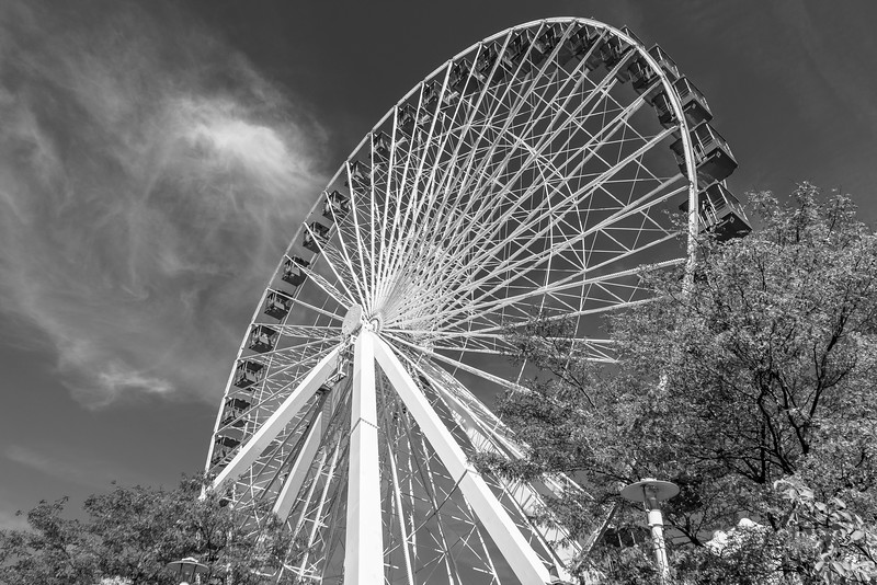 Ferris Wheel at Navy Pier Black and White