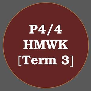 P4/4 HMWK T3