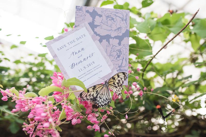 Butterfly Garden (6 of 187).jpg