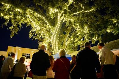 Hospice East Bay Tree Lighting