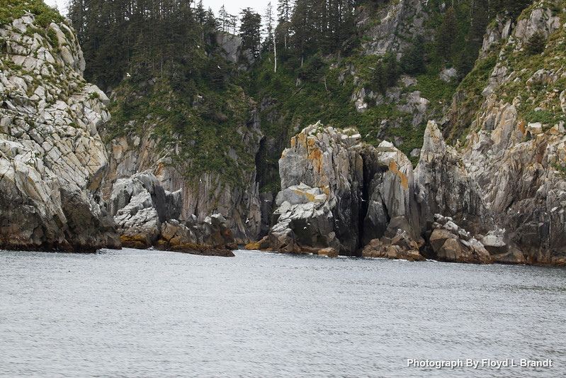 Alaska Kenai Fjords0101.JPG