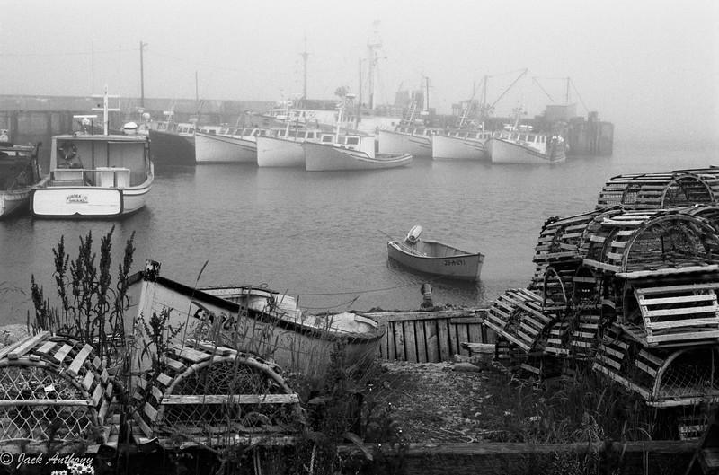 20100503-lobster traps.jpg