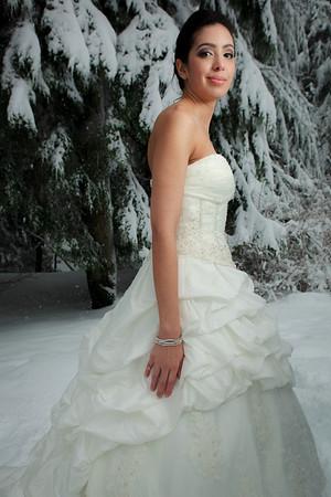 Blizzard Bride