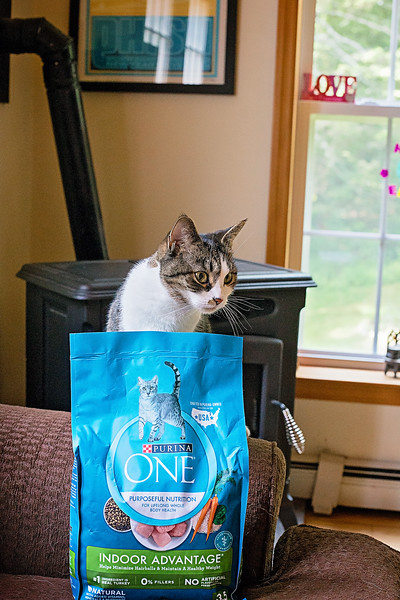 Purina ONE For dogs and cats-6-2.jpg