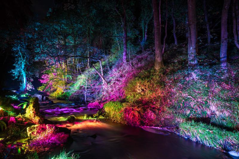 Light Show @ The Lodge, Aberfoyle