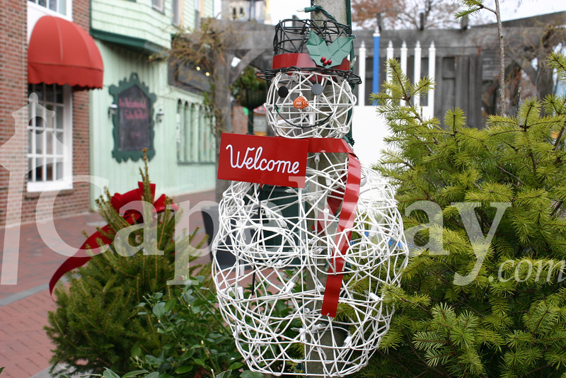 Holiday Decor Comes to the Washington Street Mall.jpg