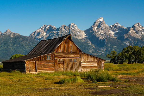 Yellowstone/Teton National Park
