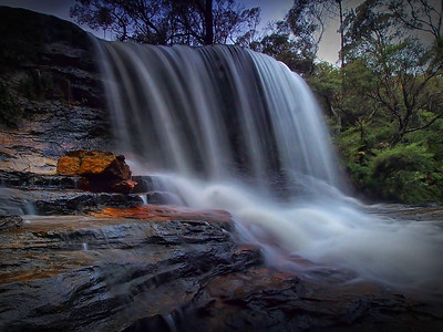 Blue Mountains Nature