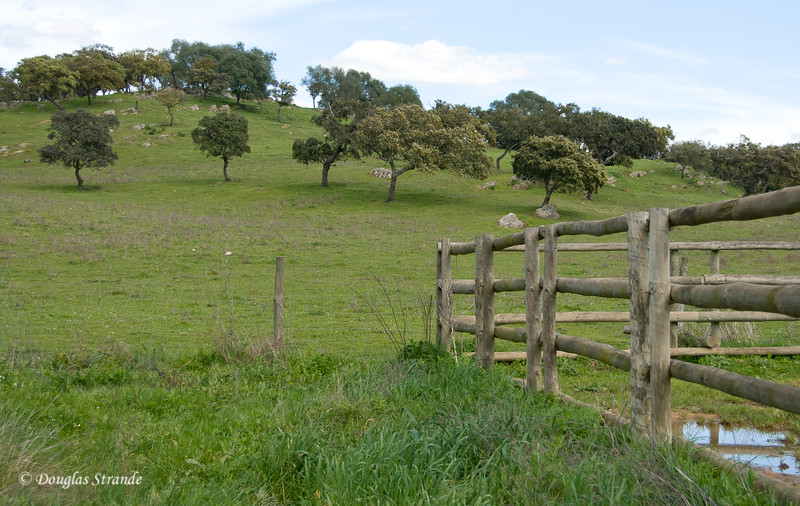 Wed 3/16 at the horse-breeding farm: View of the surrounding terrain