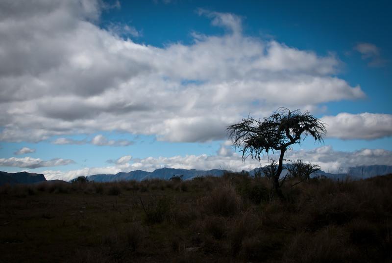 Tarija 201205 Valle de Los Condores (341).jpg