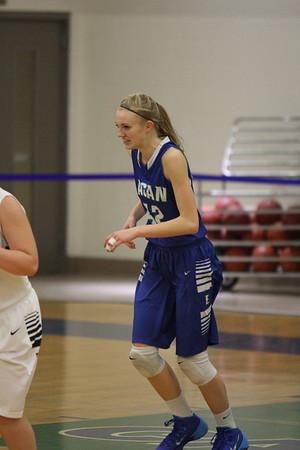 oops... uploaded the wrong photos BBall vs  Lakeville South
