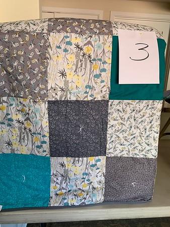 Carol Hill Quilts 2020