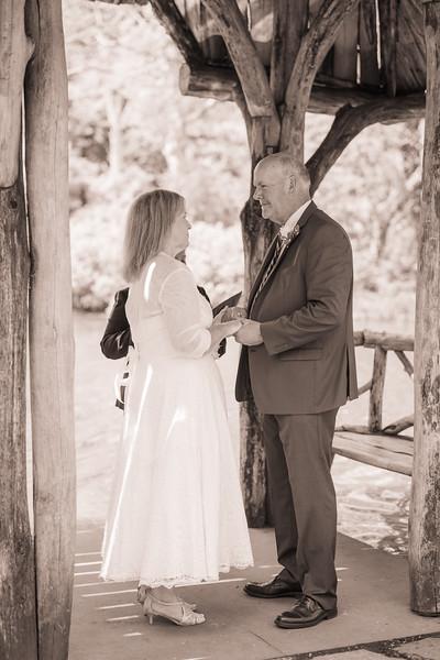 Central Park Elopement - Debra and Garrett