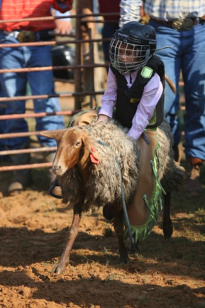 Sheep Riding 09/09/2007