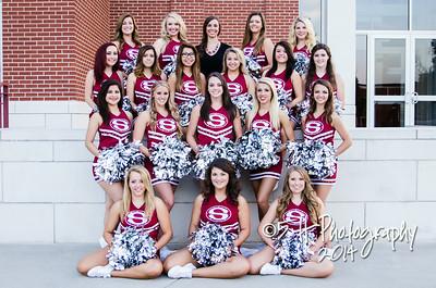2014-15 Springdale Dance