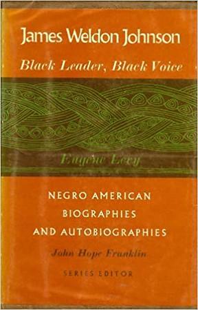 James Weldon Johnson, Black Leader, Black Voice.jpg