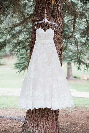 Jessie and Rich's Wedding In Lower Lake Ranch Pine, Colorado