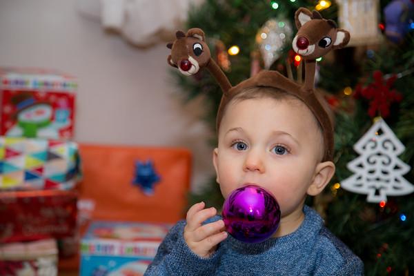 Alden Christmas Mini